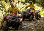 2 Hour Waterfall and Forest Track - QUADS. Greymouth, New Zealand