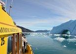 Fiord Adventure - Private charter,