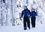 Cross-Country Skiing Trip. Rovaniemi, FINLAND