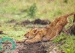 Exploraciones atractivas de Tanzania: 6 días. Arusha, TANZANIA