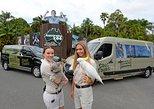 Small-Group Australia Zoo Day Trip from Brisbane, Brisbane, AUSTRALIA