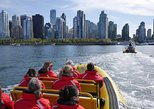 Downtown Vancouver Sightseeing Cruise in a Zodiac Vessel,