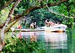 Huatulco Turtle and Crocodile Eco Tour with Mangrove Boat Ride. Huatulco, Mexico