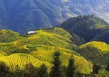 All-inclusive Private Day Tour to Longji Rice Terraces and Village, Guilin, CHINA