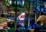 Recorrido por la ciudad de Houston y entrada completa al Downtown Aquarium. Houston, TX, ESTADOS UNIDOS