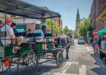 Guided Civil War Carriage Tour of Charleston, Charleston, SC, ESTADOS UNIDOS