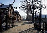 Full day tour to Auschwitz and Salt Mine from Krakow, Cracovia, POLÔNIA
