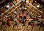 Rotorua Evening Maori Cultural Performance and Geyser Visit. Rotorua, New Zealand