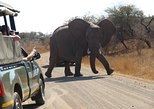 4 Day Classic Kruger National Park Safari. Johannesburgo, South Africa