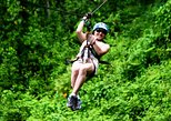 Arenal Volcano Full-Day Combo Tour with Lunch and Dinner,
