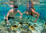 Snorkeling Tour at Hon Mun Island (Small group). Nha Trang, Vietnam