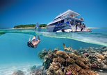 Southern Great Barrier Reef 3-Day Tour from Brisbane. Brisbane, AUSTRALIA