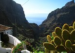 9 hour Trekking Tour of Masca Village in Tenerife for Small Group with Guide, Gran Canaria, ESPAÑA