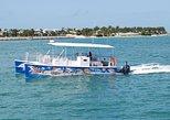 Excursión en catamarán para toda la familia para ver tiburones y fauna y flora en Cayo Hueso. Cayo Hueso, FL, ESTADOS UNIDOS