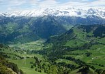 Mount Stanserhorn tour with personal guide and private driver including all tickets, Lucerna, SUIZA