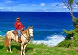 West Maui Mountain Waterfall and Ocean Tour via Horseback. Maui, HI, UNITED STATES