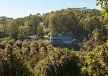 Cape Byron Distillery and Rainforest Tour, Byron Bay, AUSTRALIA