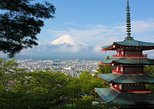 1 Day Private Mt Fuji Tour (Charter) - English Speaking Driver, Tokyo, JAPON