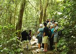 Volcano, Lake, Ruins Tour: Cerro Vede, Caotepeque, San Andres,