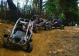 Laguna Verde Dune Buggy Adventure from San Salvador,