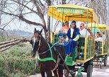 Agadir Horse-Drawn Carriage Ride & La Medina d'Agadir Visit with Hotel Transfers. Agadir, Morocco