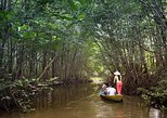 Can Gio Biosphere Reserve Full-Day Tour by Luxury Speedboat. Ho Chi Minh, Vietnam