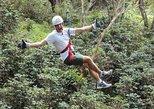 Excursão de tirolesa de tirolesa ao vulcão Mombacho em Manágua com admissão. Managua, NICARÁGUA