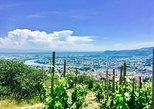 Northern Rhône Valley full day. Lyon, FRANCE