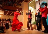 Flamenco Show at Casa de la Memoria Admission Ticket. Sevilla, Spain