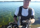 Coffin Bay Oyster Farm & Tasting Tour. Port Lincoln, AUSTRALIA
