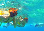 Paradise Cove Day Pass Or Snorkel Only with Transport from Freeport,