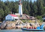 Excursão de barco panorâmica pela cidade de Vancouver com observação de focas,