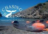 Recorridos en kayak transparente con Chasing Syrens. Sorrento, ITALIA