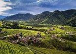 Wine tour & tasting - Prosecco Experience. Cortina d Ampezzo, ITALY