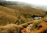 Horton Plains-World's End Tour From Nuwaraeliya. Nuwara Eliya, Sri Lanka