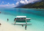 6-hour Snorkeling & Lunch Tour - Shared Tour,