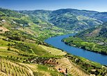 Douro Valley Wine Tour with Lunch, Tastings and River Cruise. Oporto, PORTUGAL