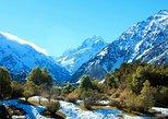 Aoraki-Mt Cook Tasman Glacier & Alpine Centre scenic day tour from Christchurch. Christchurch, New Zealand