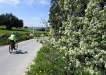 7-Day Sicily Bike Tour of the Baroque Hill Towns Standard accomodation-BB or 2 star hotels, Siracusa, Itália