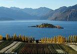 Wine Tour with Wine Tasting from Wanaka. Wanaka, New Zealand