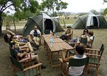 3 Days Safari to Mikumi - CAMPING, Dar es Salaam, Tanzânia