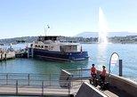 Visita a los parques de Ginebra y Segway de 2,5 horas con jardín botánico,
