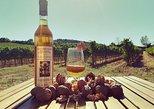Maxi Gourmet Wine Tour San Gimignano Wine Tasting - San Quirico Winery. San Gimignano, ITALY