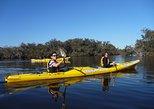 Kayak Tour on the Canning River, Perth, AUSTRALIA