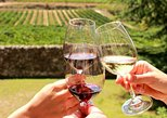 Stellenbosch Half Day Wine Tour. Ciudad del Cabo, South Africa