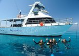Great Barrier Reef Diving from Townsville or Magnetic Island. Townsville, AUSTRALIA