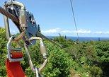 Excursión a la tirolina por la selva de Maui, Maui, HI, ESTADOS UNIDOS
