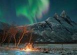 Excursión para observar la aurora boreal. Tromso, NORUEGA