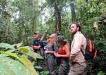 Iquitos to Pacaya-Samiria Reserve 4-Day Amazon Wildlife Tour. Iquitos, PERU