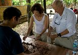 Cocoa farm and Chocolate making!,